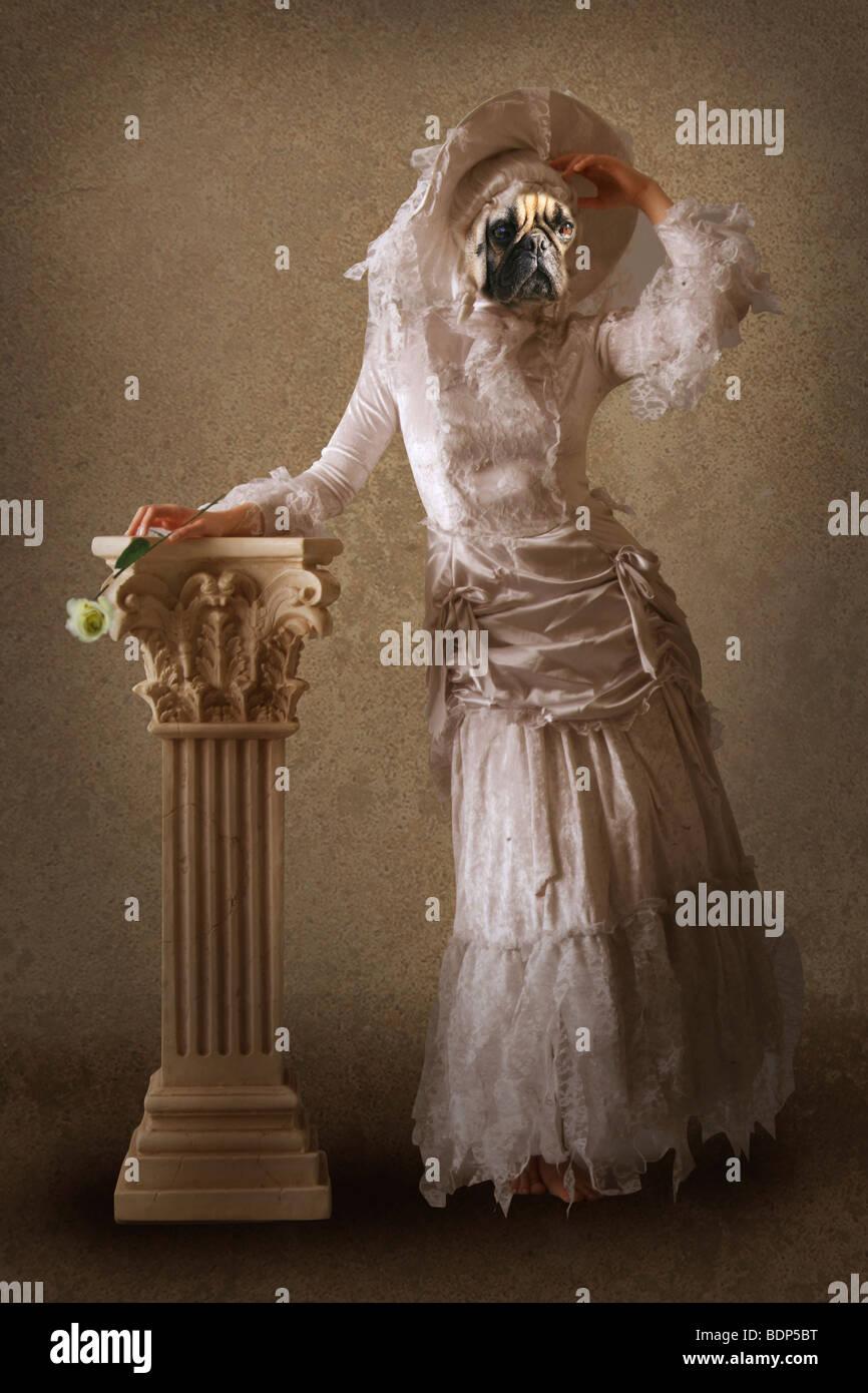 Cane surreale vestita come una signora Immagini Stock