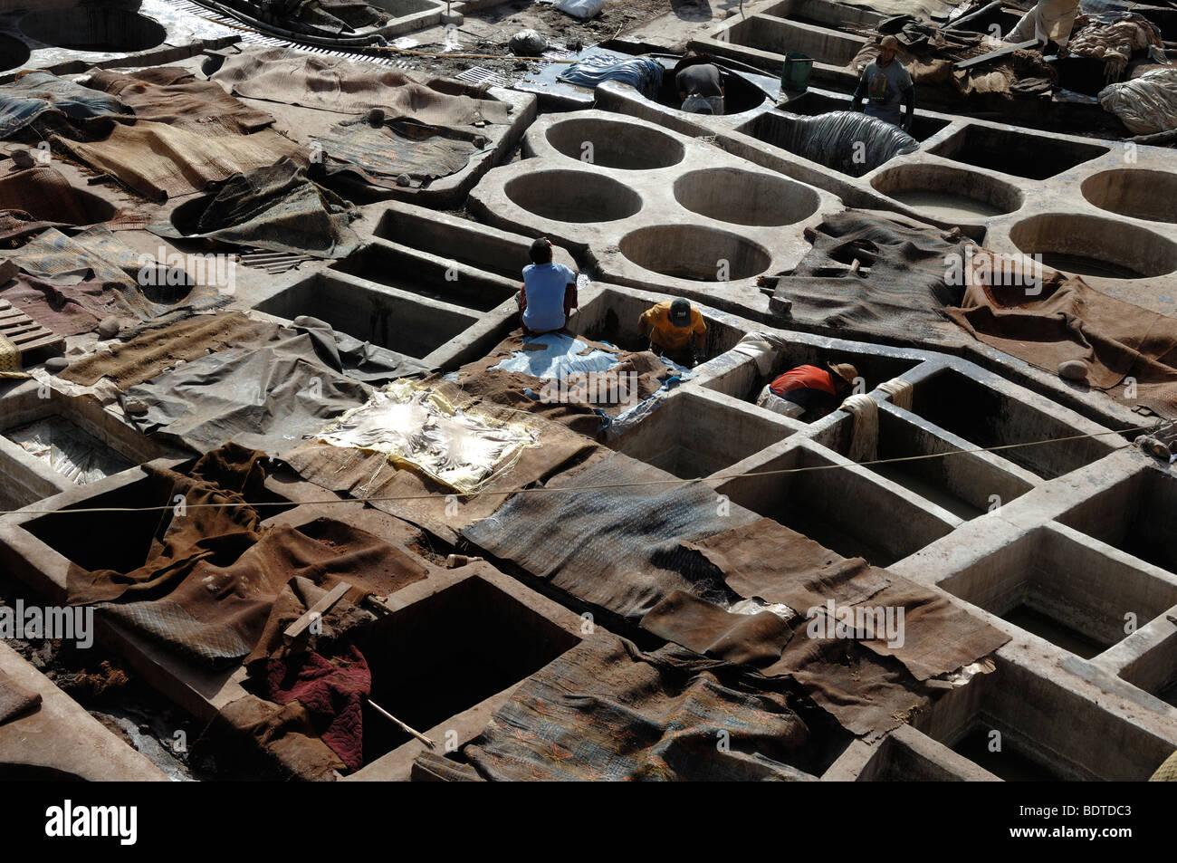 Pelle di morire nelle concerie marrakech marocco Immagini Stock