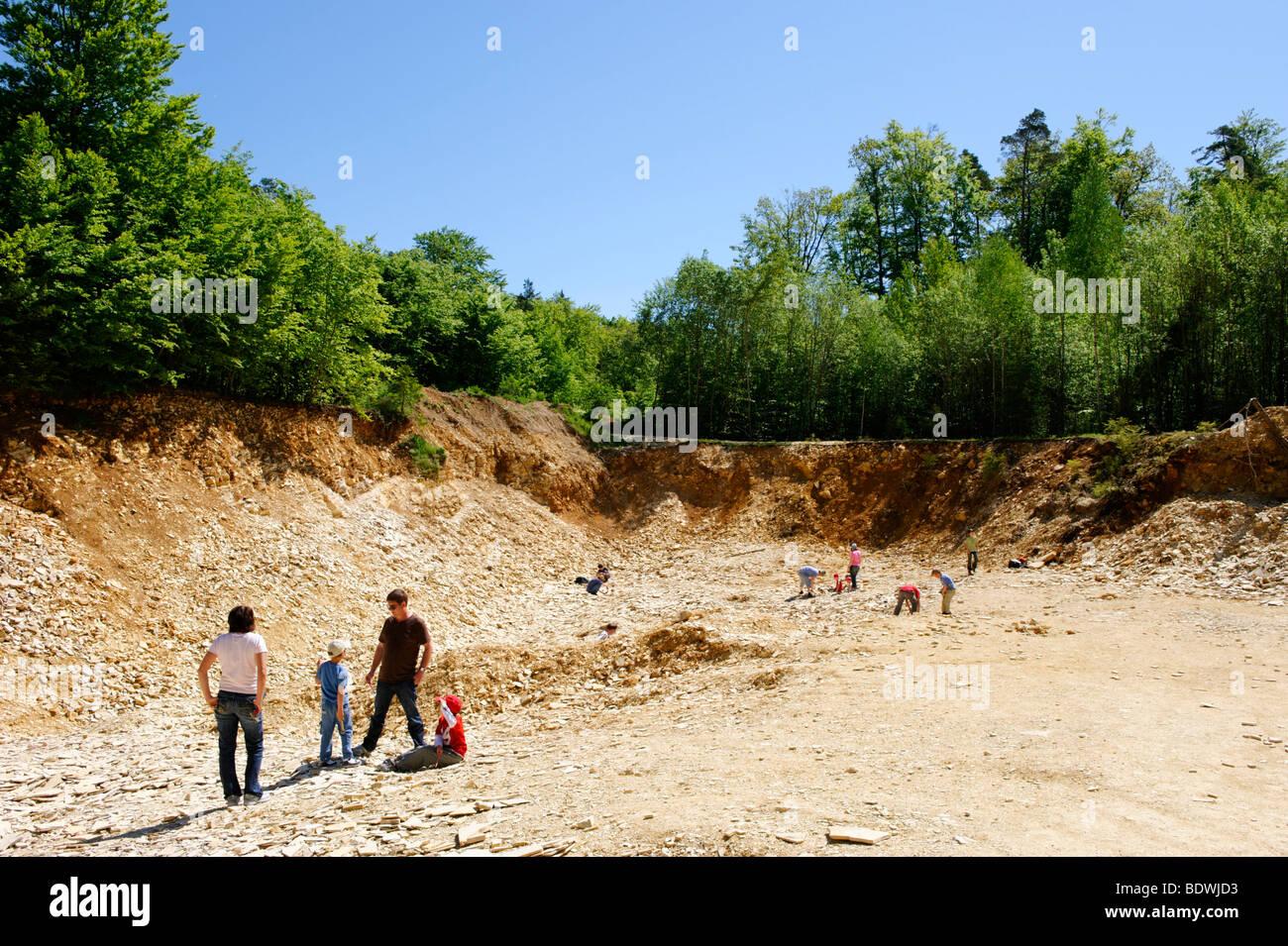 La ricerca di fossili zona cava di calcare per hobby collezionisti fossile nei pressi di Solnhofen nell'Altmuehl Immagini Stock
