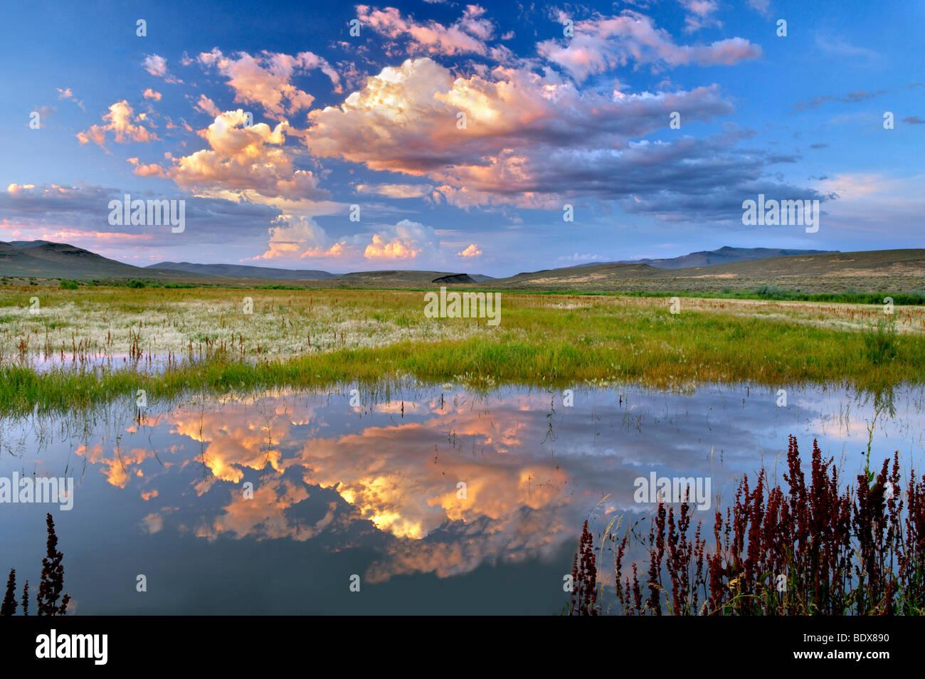 Tramonto nubi sul laghetto. Black Rock Desert National Conservation Area. Nevada Immagini Stock
