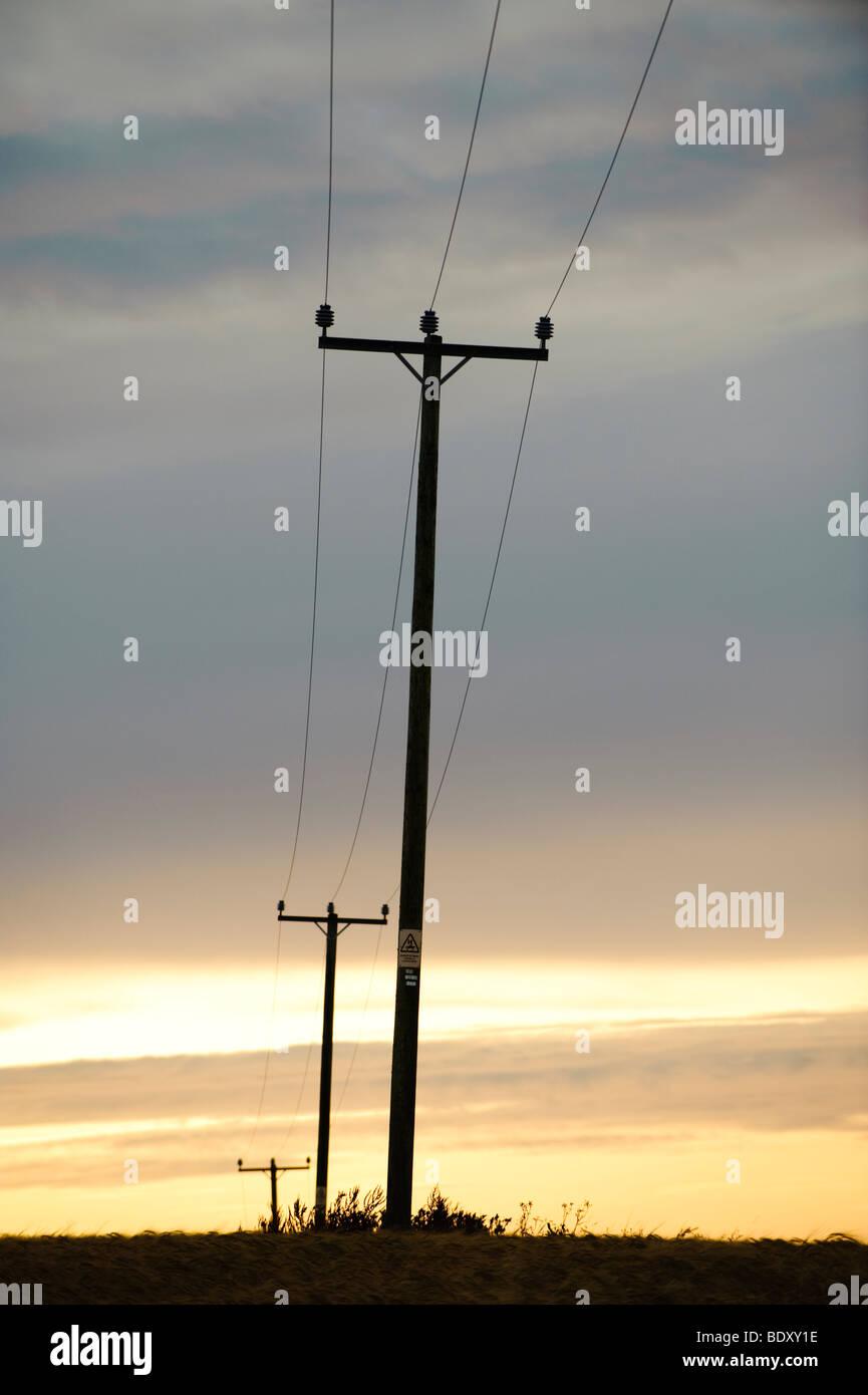 Sagome di pali del telefono e i fili al crepuscolo Foto Stock