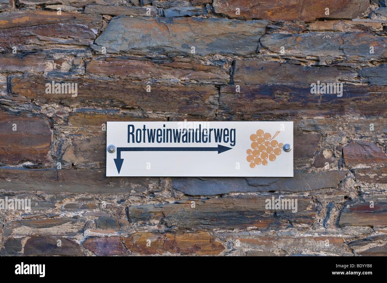 Guida Rotweinwanderweg, vino rosso sentiero nella valle dell'Ahr, Renania-Palatinato, Germania, Europa Immagini Stock