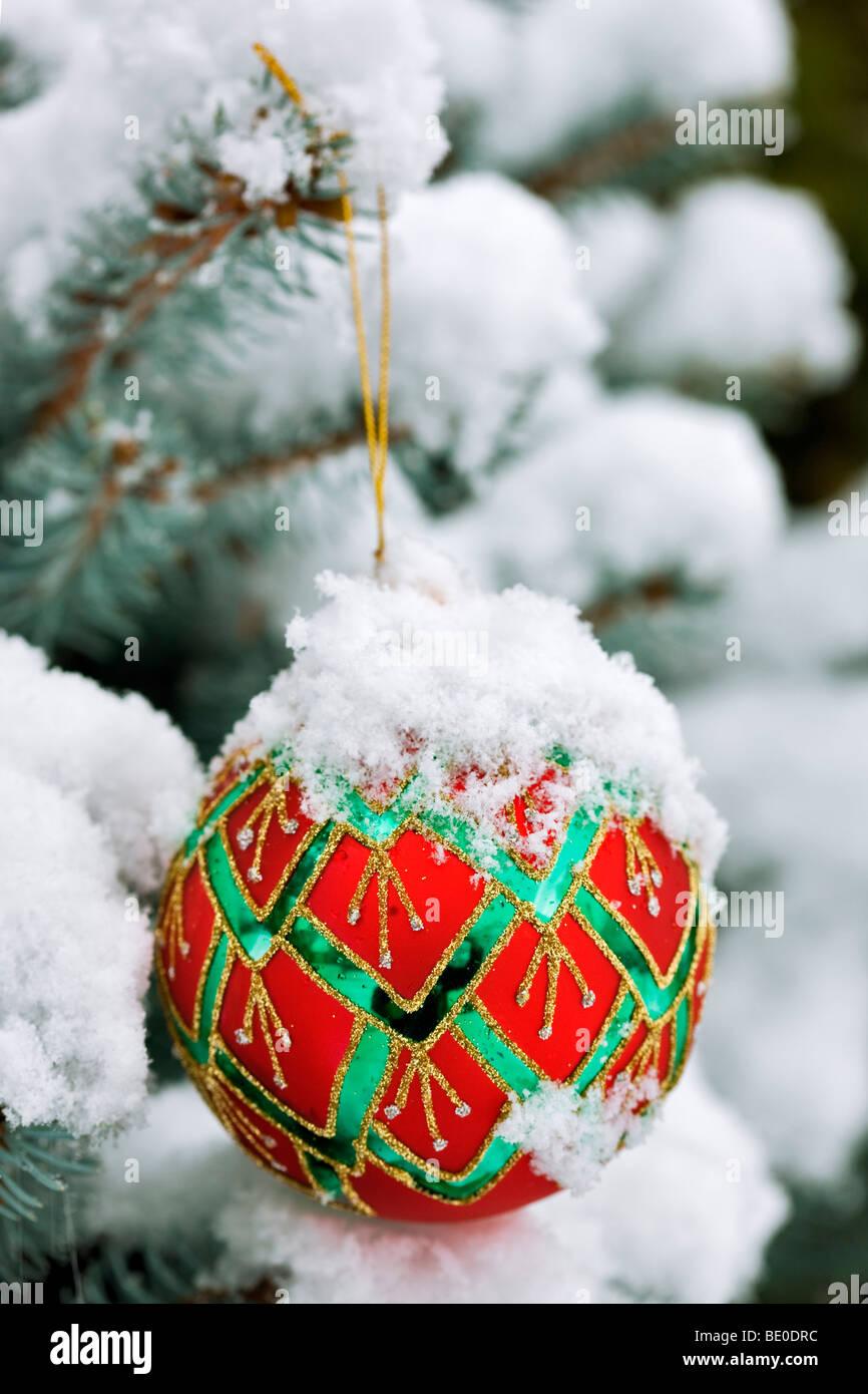 Albero di natale ornamento in coperta di neve albero. Immagini Stock