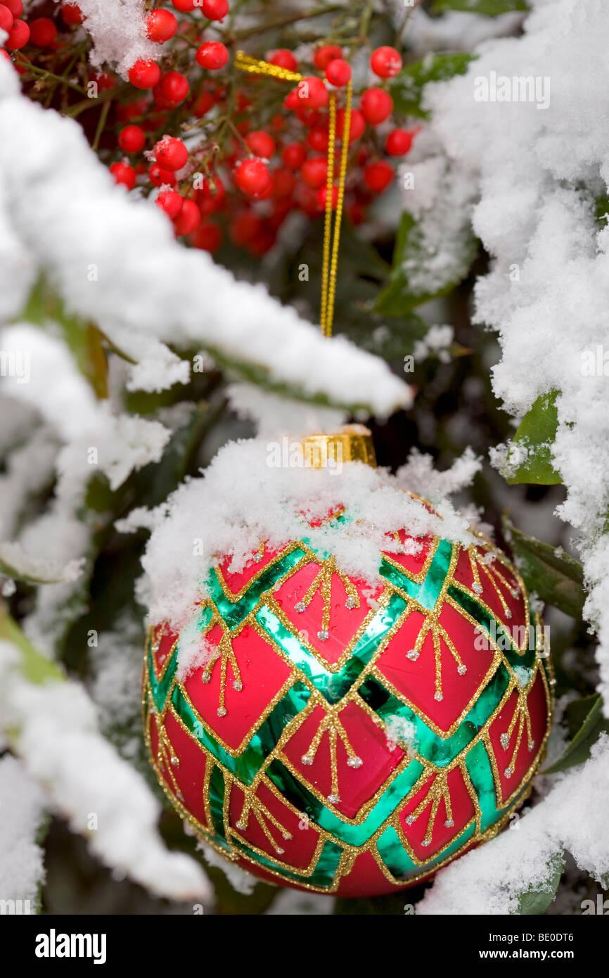 Albero di natale ornamento in coperta di neve la boccola con bacche rosse. Immagini Stock