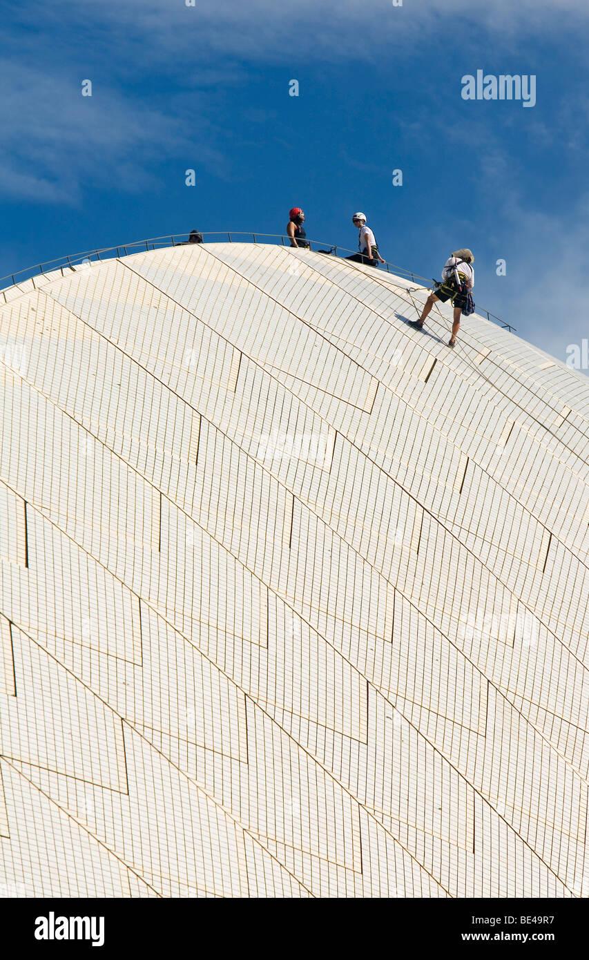 Scala dei lavoratori il tetto del Teatro dell'Opera di effettuare le riparazioni. La Circular Quay, Sydney, Immagini Stock