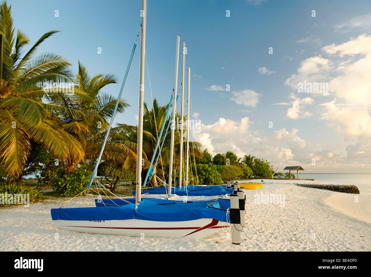 Hobby Auto, catamarani, le barche a vela, fianco a fianco, sulla spiaggia, palme, Maldive isola, South Male Atoll, Immagini Stock