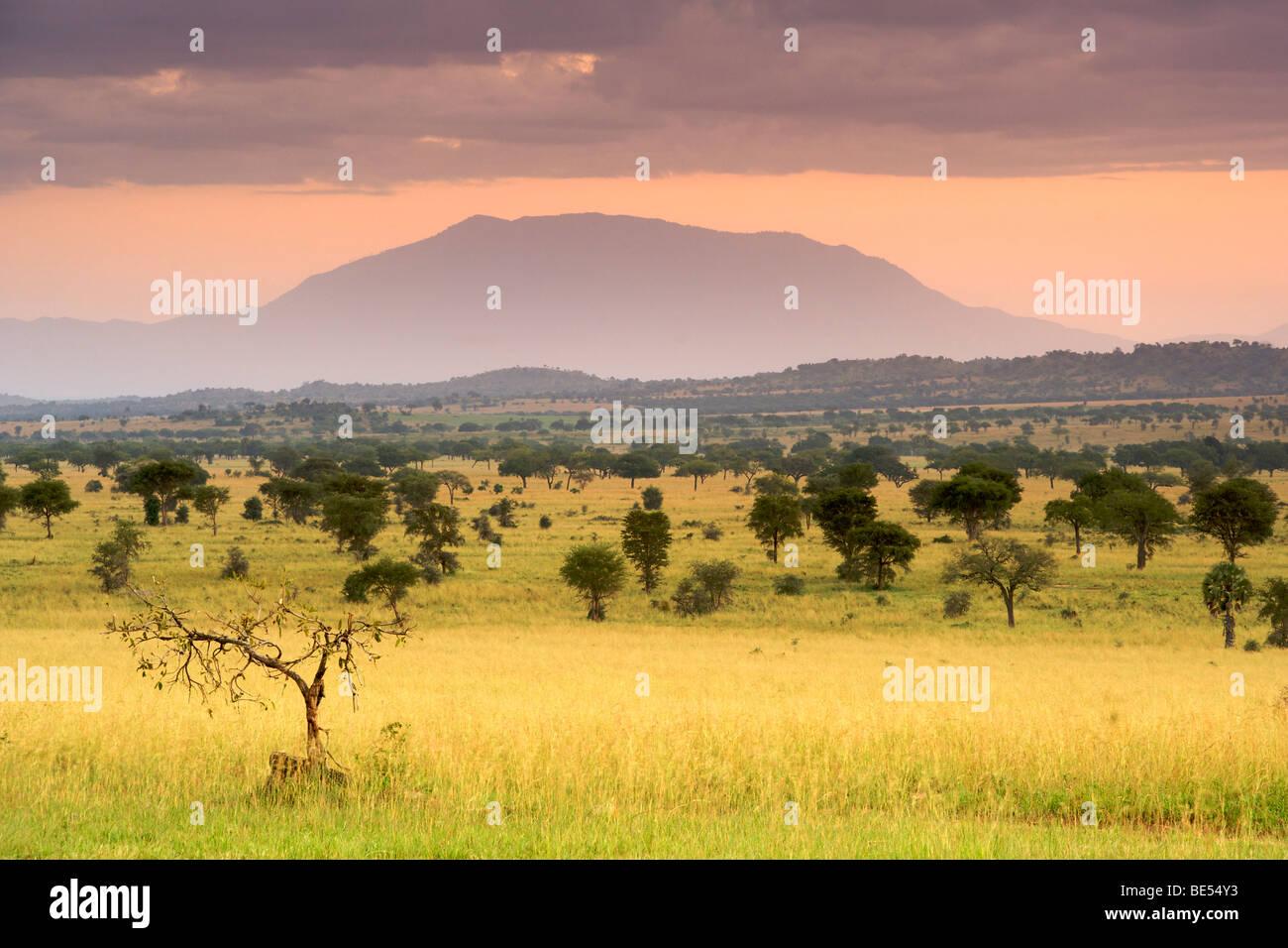 Alba in Kidepo Valley National Park in Uganda del nord. Immagini Stock