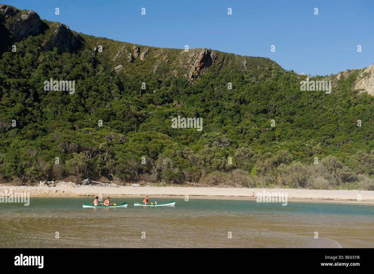 Canoe nella natura della valle, Garden Route, Sud Africa Immagini Stock