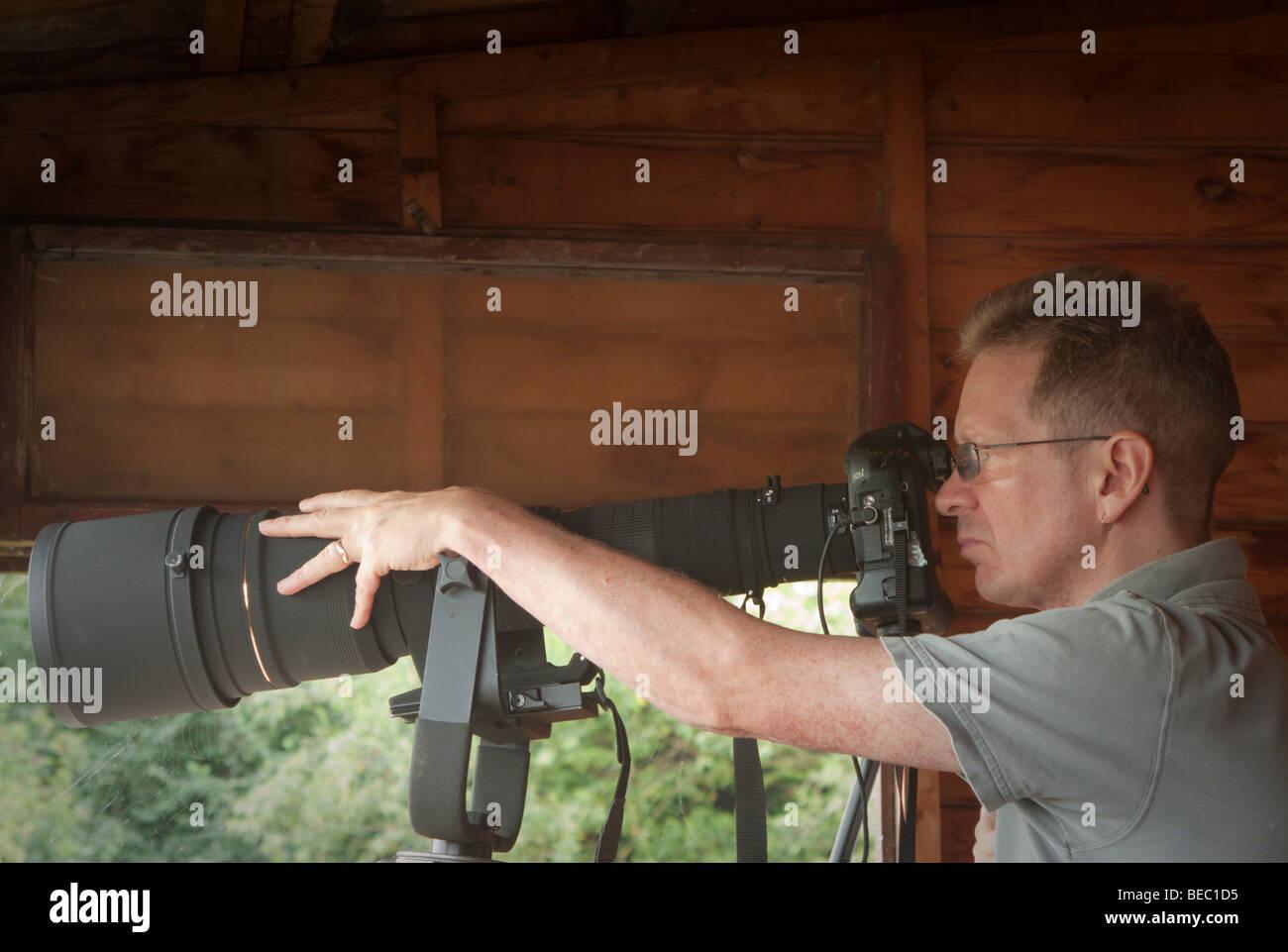 Voce maschile Wildlife Photographer utilizzando un teleobiettivo in bird Nascondi Immagini Stock