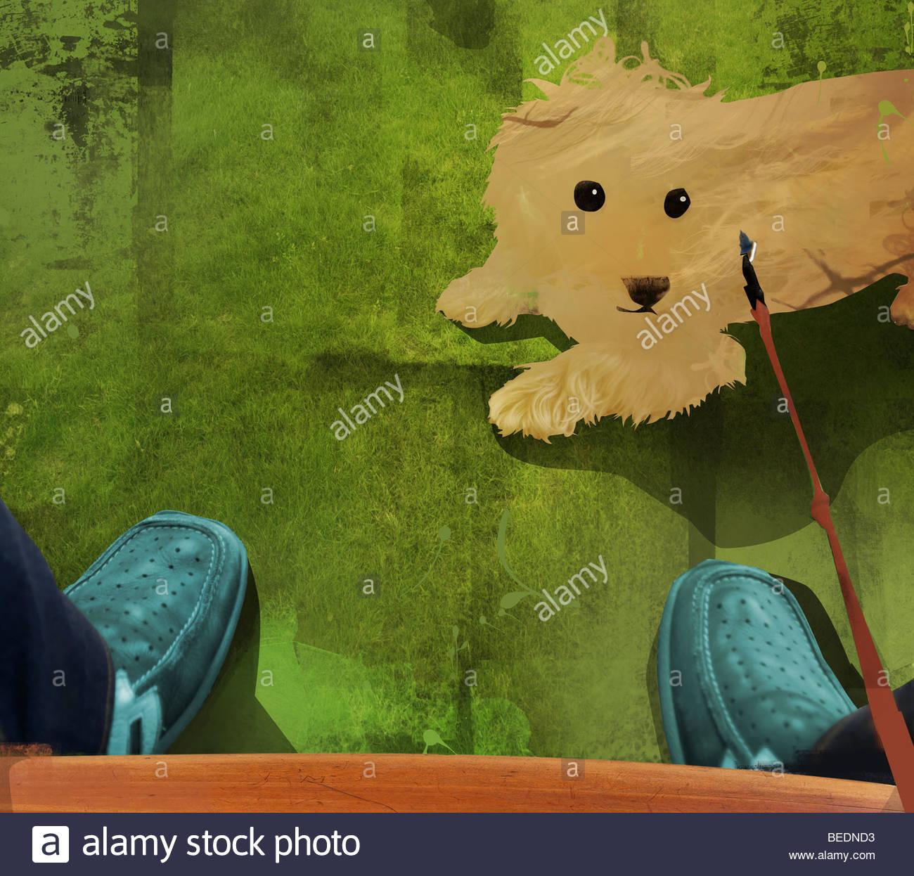 Proprietario guardando giù al cane al guinzaglio Immagini Stock