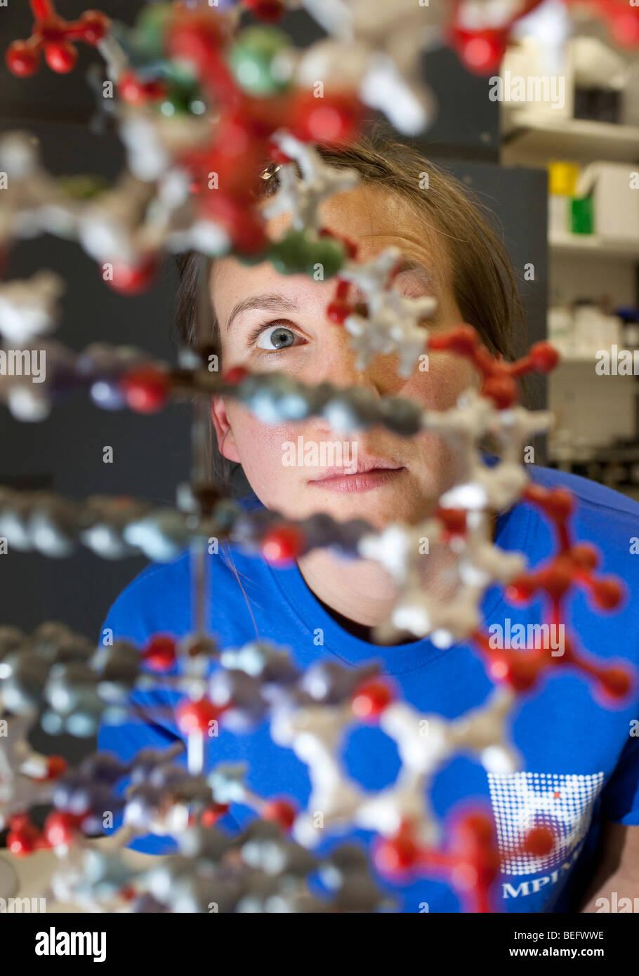 Studente seduto dietro un modello di DNA in corrispondenza del Max-Planck-Institue a Berlino Immagini Stock