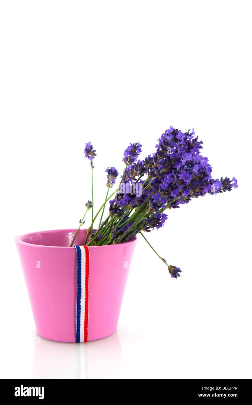 Mazzo Di Fiori In Francese.Mazzo Di Fiori Di Lavanda In Fiore Rosa Pot Con Bandiera Francese
