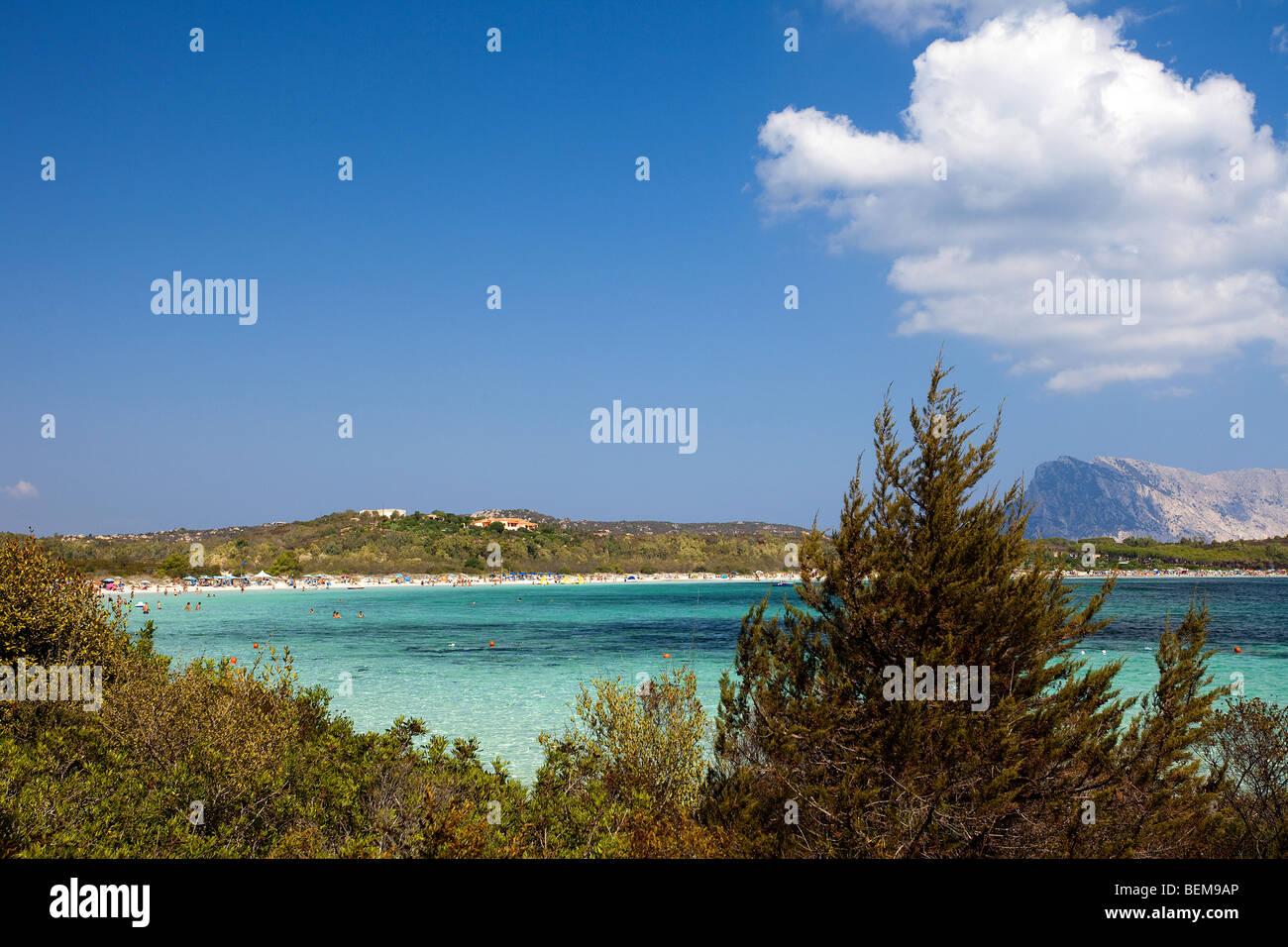 Cala Brandinchi Sardegna Italia Acqua Color Smeraldo Del Mare E L