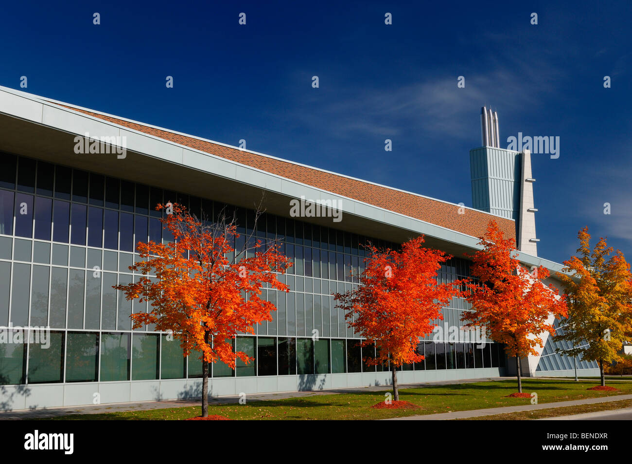 Red alberi di acero e architettura moderna di seneca college york university stephen e quinlan edificio in autunno Immagini Stock
