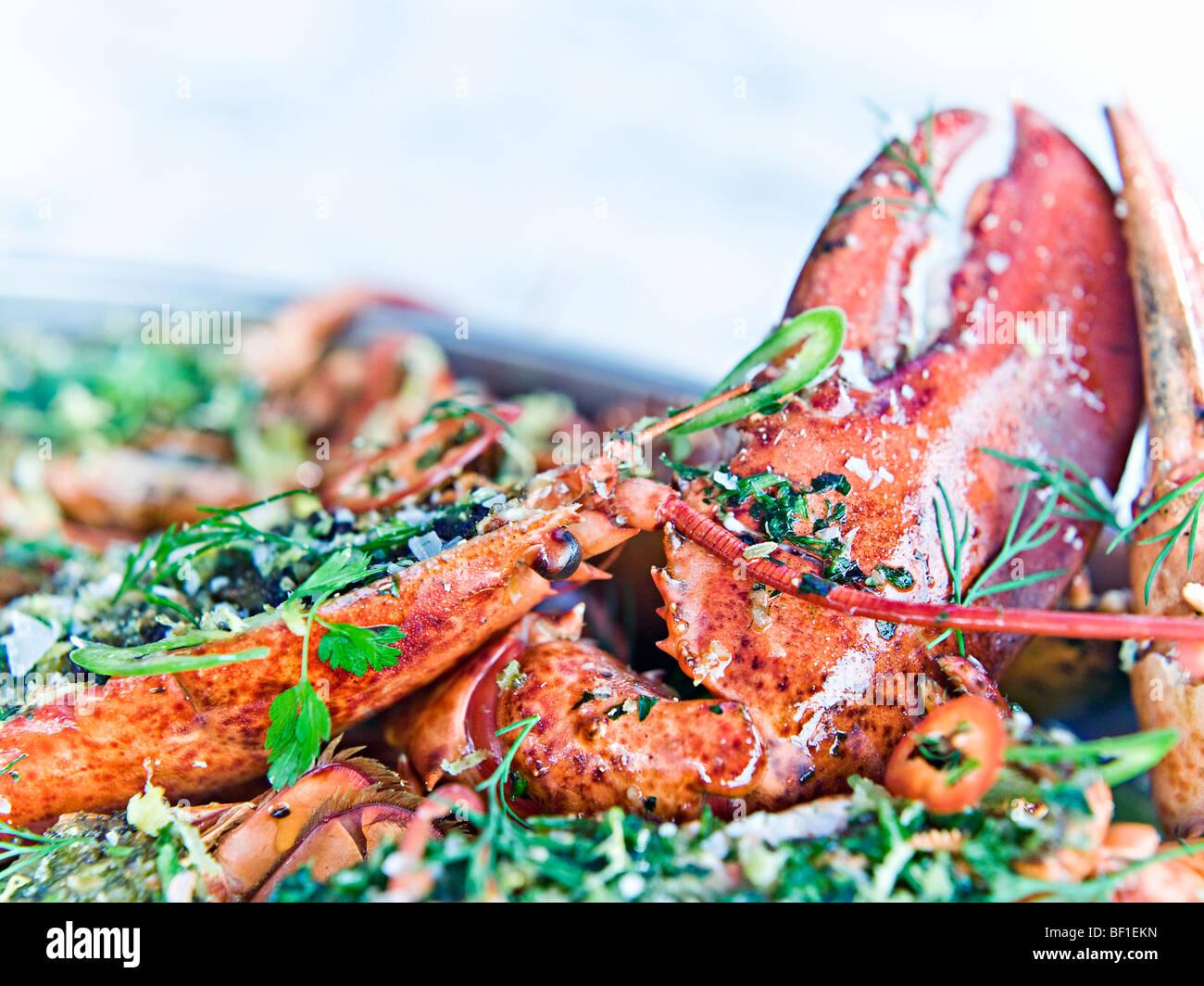 Preparati a base di aragosta, close-up, Svezia. Immagini Stock