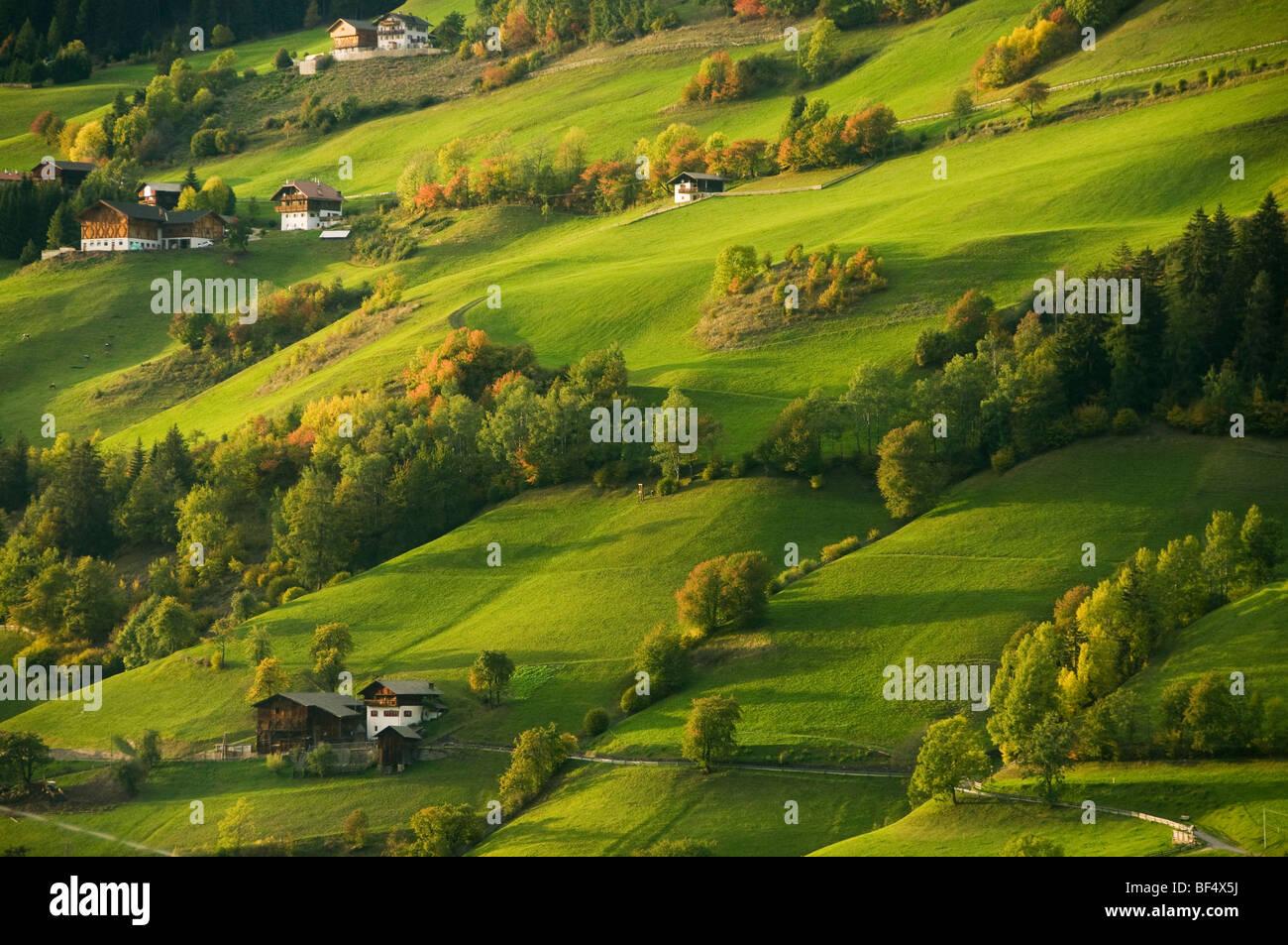 Case e fattorie, Val di Funes, Dolomiti, Trentino-Alto Adige, Italia Immagini Stock