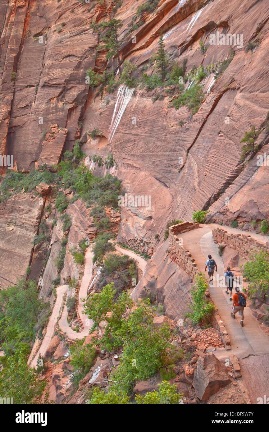 Gli escursionisti Salita switchbacks sul West Rim Trail agli angeli sbarco percorso presso il Parco Nazionale Zion, Immagini Stock