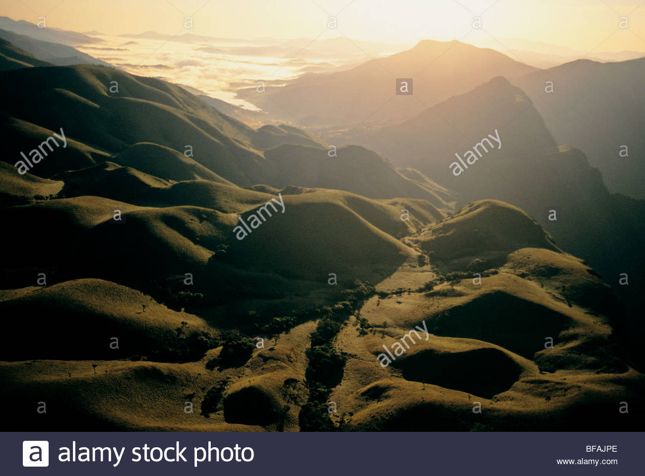 Nilgiri Hills (antenna), i Ghati Occidentali, India Immagini Stock