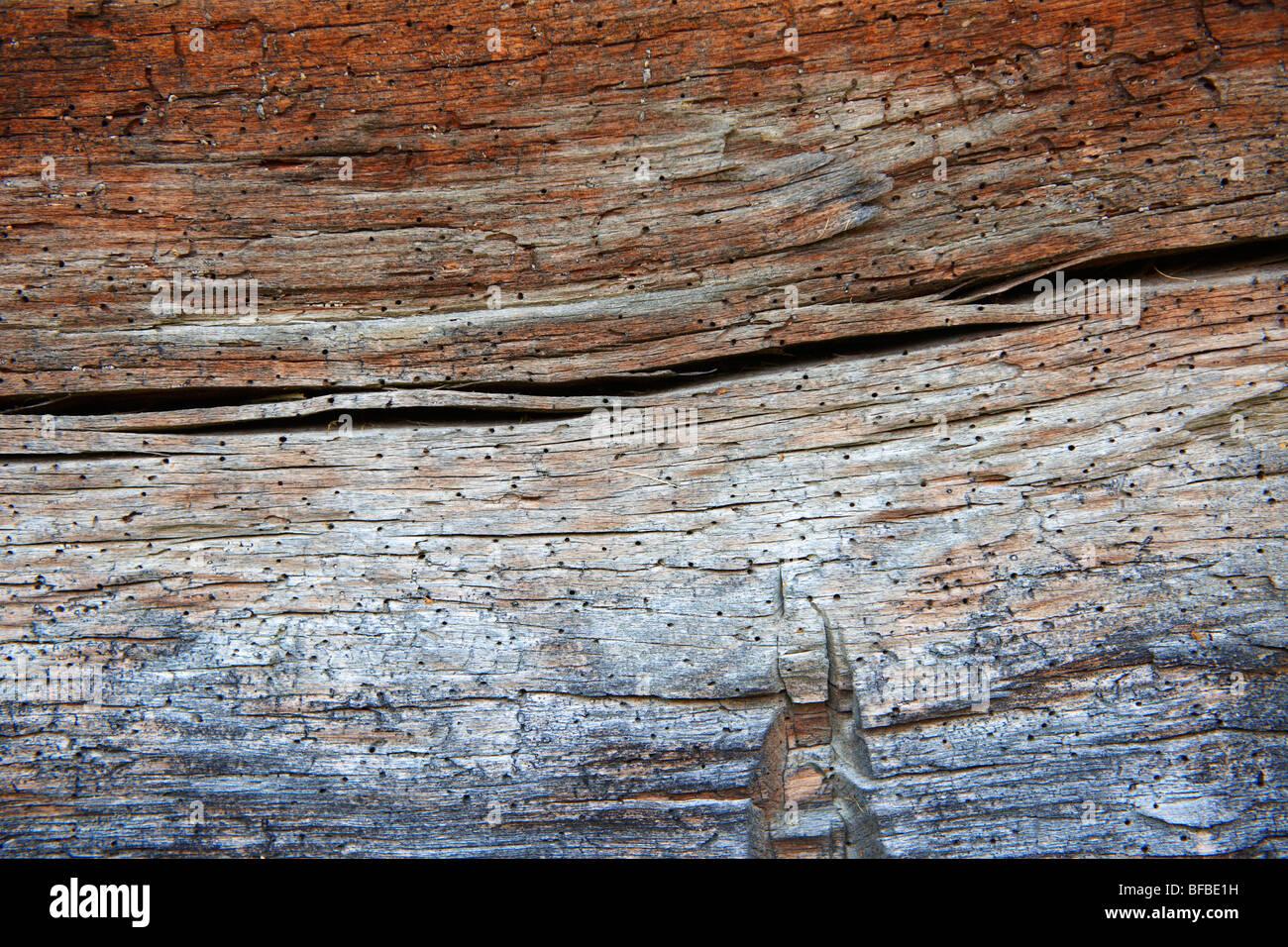 Texture naturali - vecchio legno stagionato texrure Immagini Stock