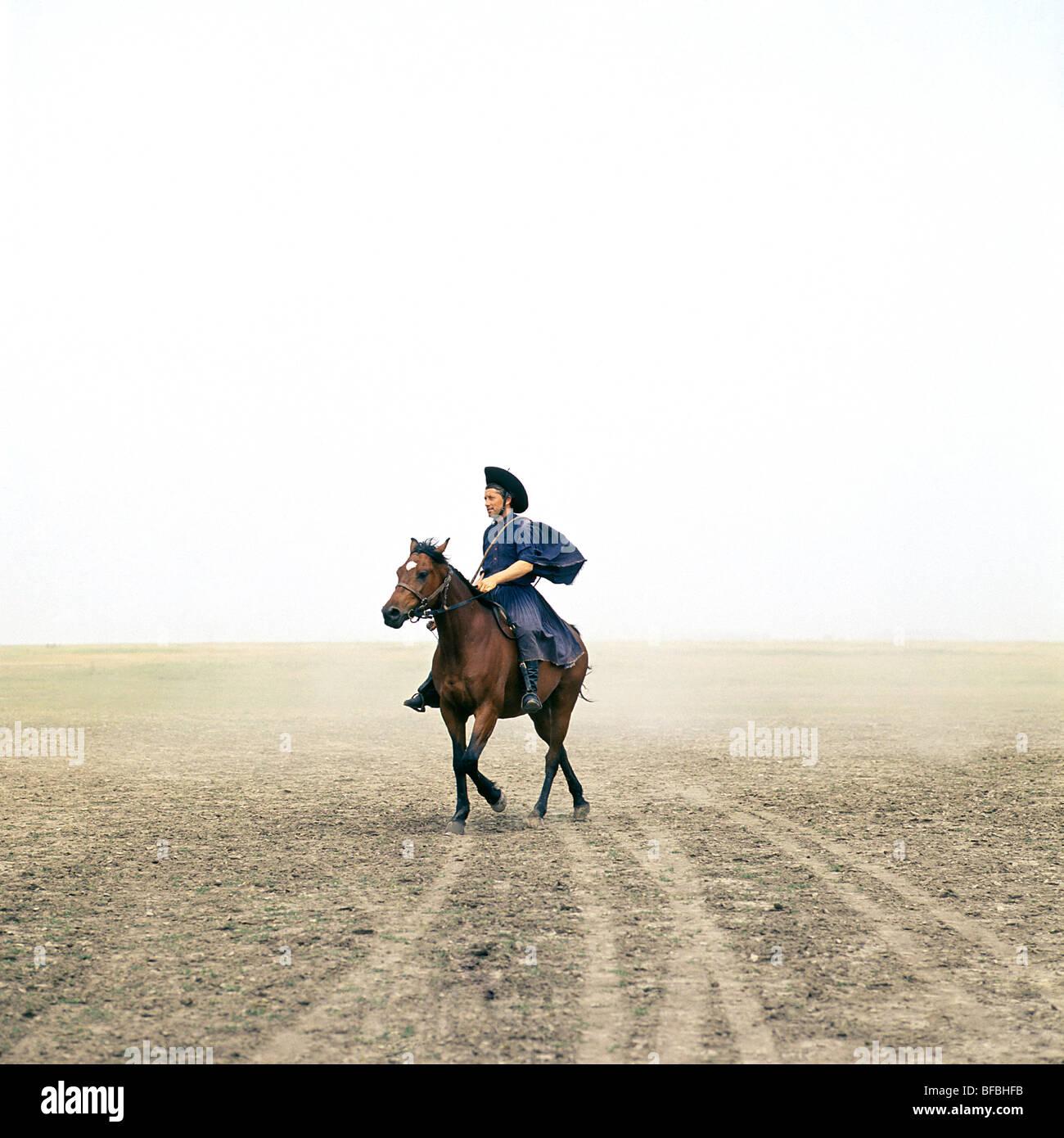 Cavallo ungherese cavalcato da csik su Hortobagyi Puszta Immagini Stock