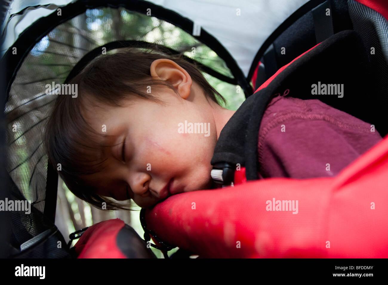14 mese vecchio ragazzo dorme in uno zaino portato dalla madre, backpacking in Maroon Bells Snowmass deserto fuori Immagini Stock