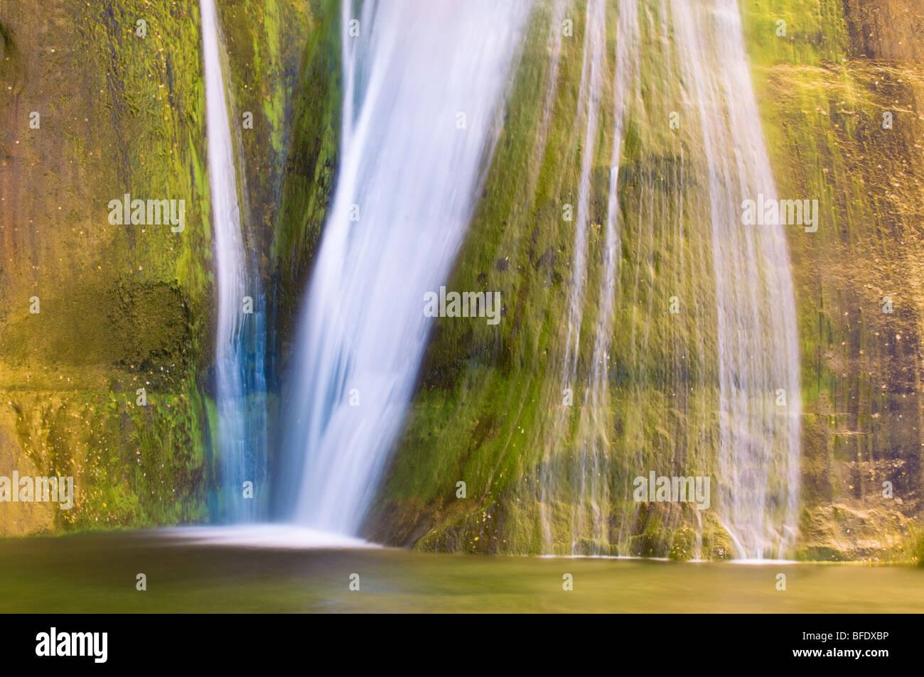 Abbassare Calf Creek Falls, Grand Staircase-Escalante monumento nazionale, Utah Foto Stock