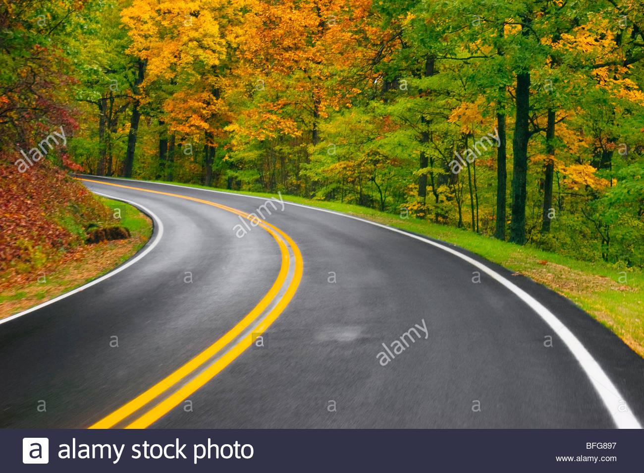 La strada attraverso i colori dell'autunno, Virginia Immagini Stock