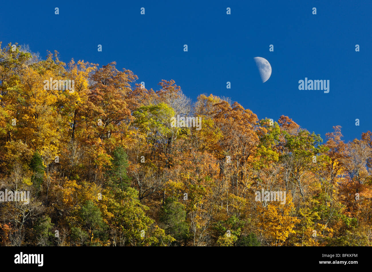Quarto Di Monte.Quarto Di Luna Immagini Quarto Di Luna Fotos Stock Alamy