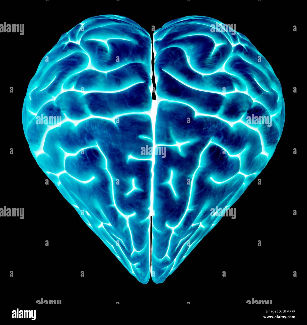 A forma di cuore cervello, opere d'arte concettuale Immagini Stock