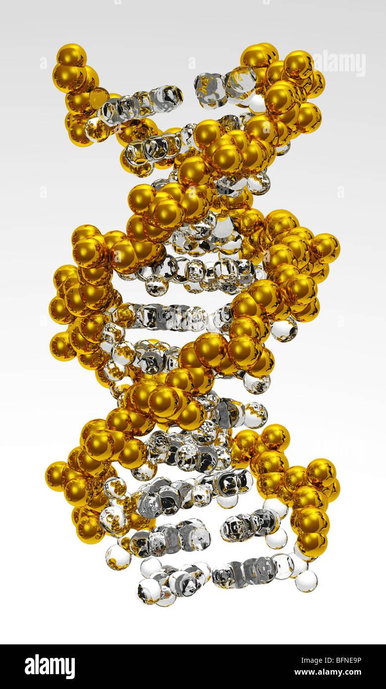 Computer generato modello tridimensionale della doppia elica del DNA Immagini Stock