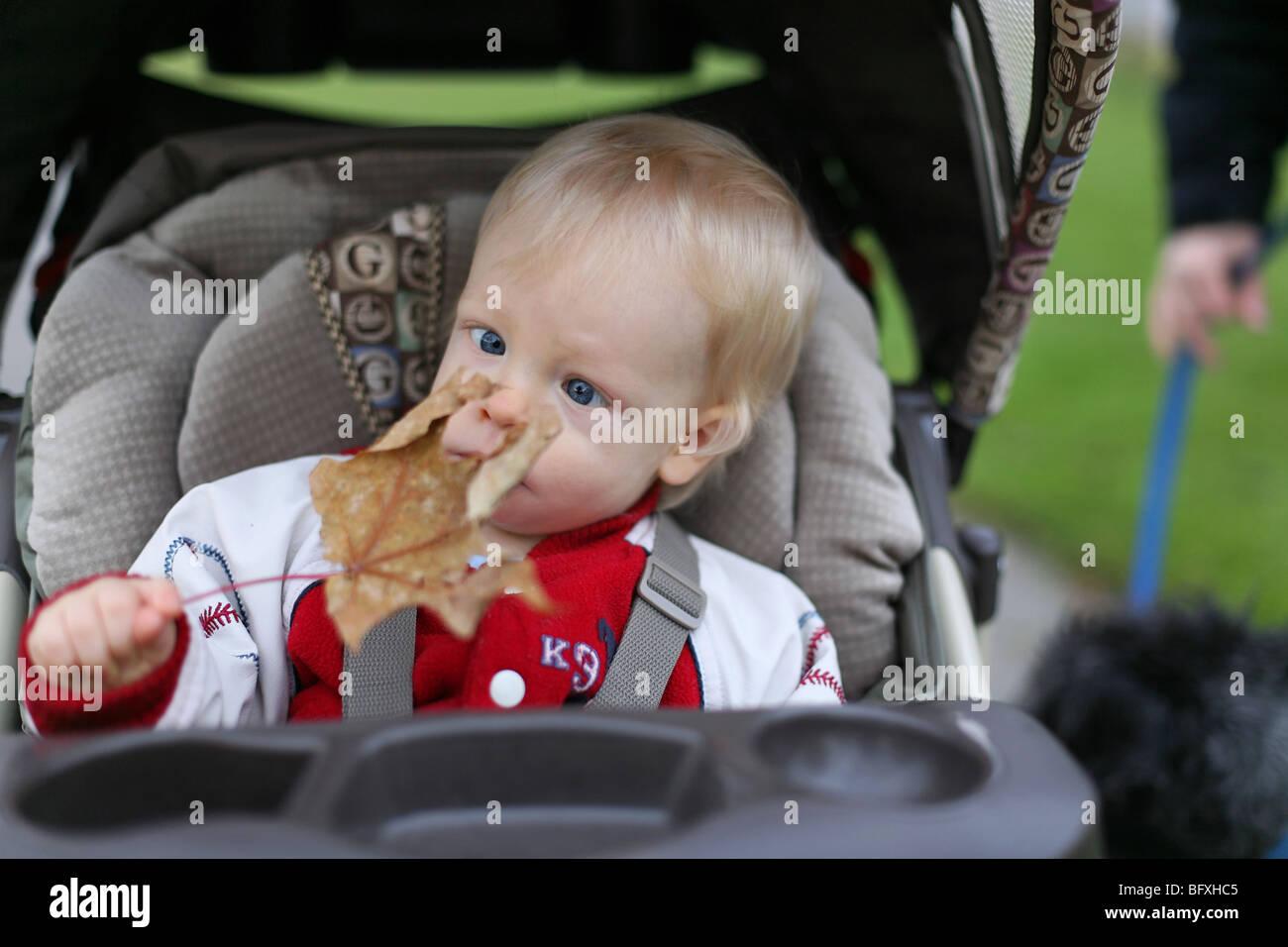 Baby boy, dodici mesi di età, attraversando i suoi occhi, guardando una foglia, in un passeggino. Immagini Stock