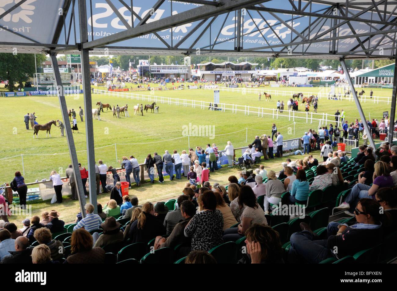 Guardando il giudizio del pony concorsi da stand dell'anello principale al 2009 Royal Highland Show, Edimburgo. Immagini Stock