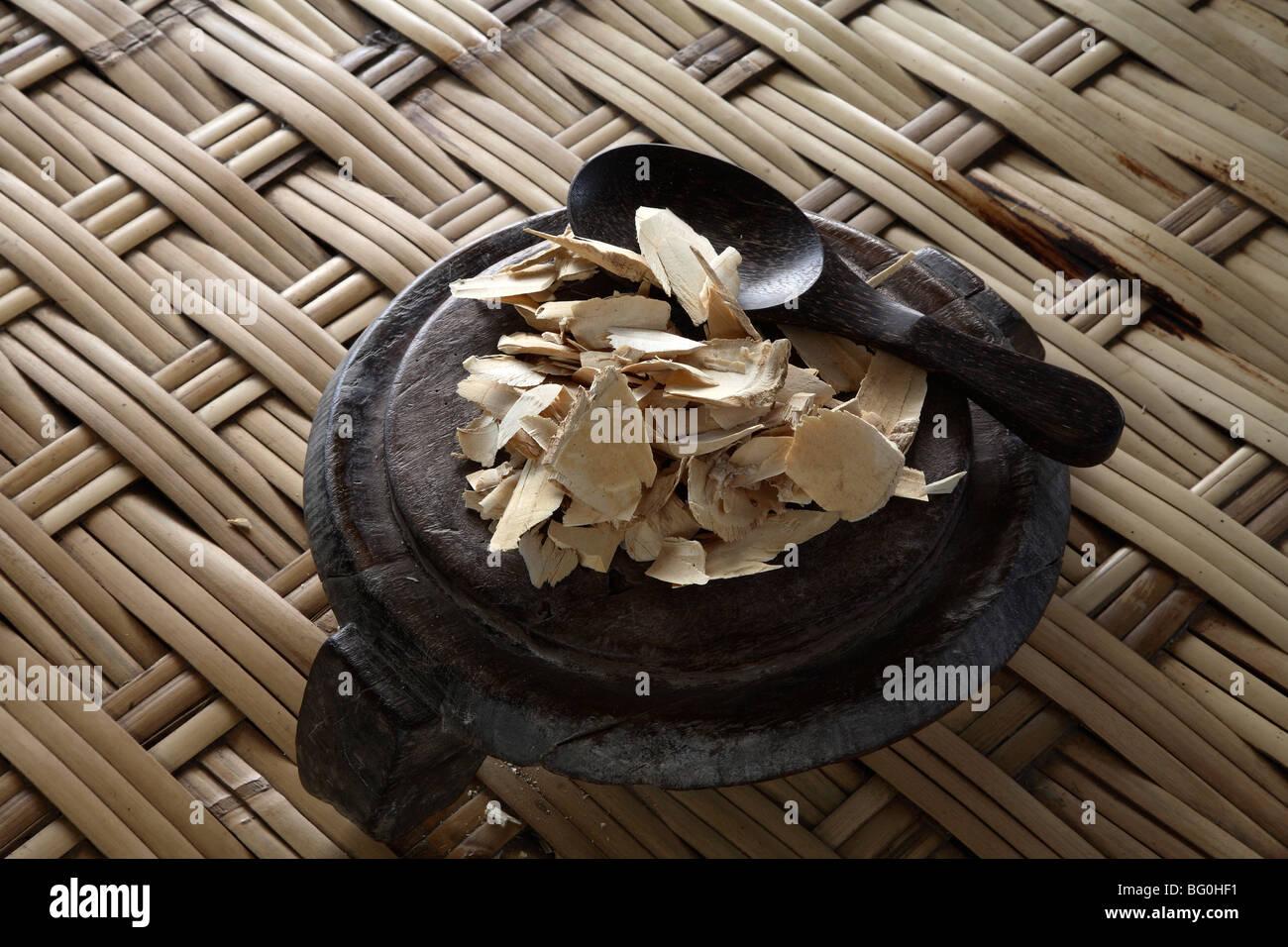 Tongkat Ali, natura testesterone del booster che è nativo di Indonesia, Malaysia e Thailandia, Asia sud-orientale, Immagini Stock