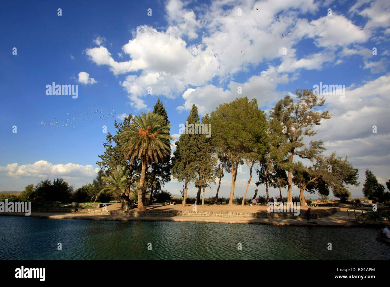 Israele, Beth Shean valley. Ein Moda (Moda Primavera) Immagini Stock