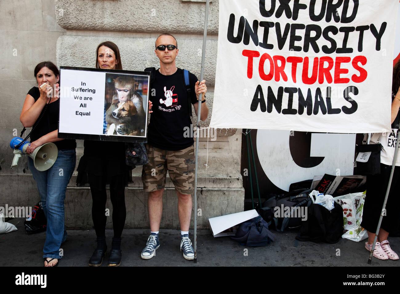 Il benessere degli animali i dimostranti di manifestare contro la sperimentazione animale, il centro di Londra. Immagini Stock