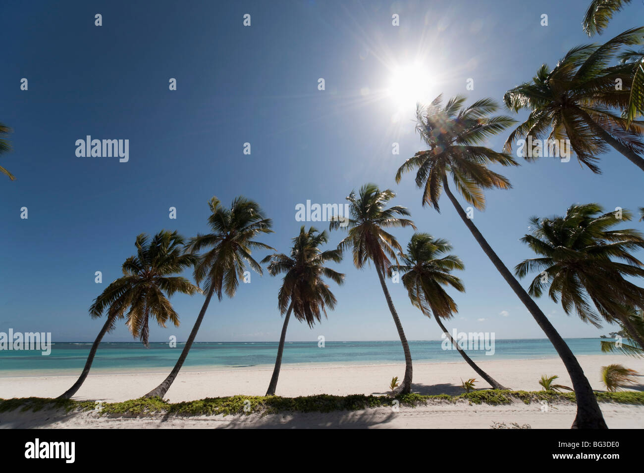 Punta Cana, Repubblica Dominicana, West Indies, dei Caraibi e America centrale Immagini Stock