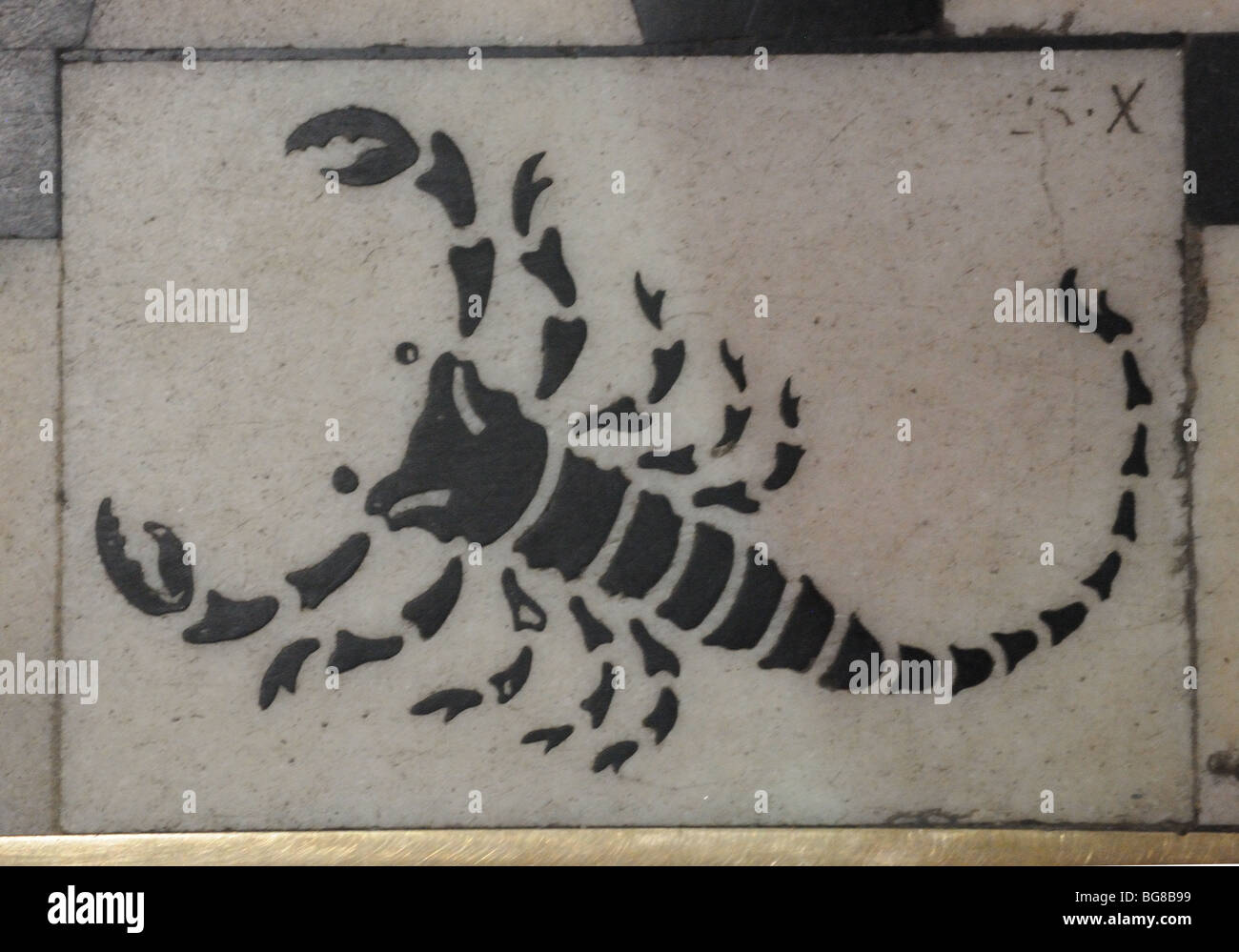 Scorpio zodiac immagini & scorpio zodiac fotos stock alamy