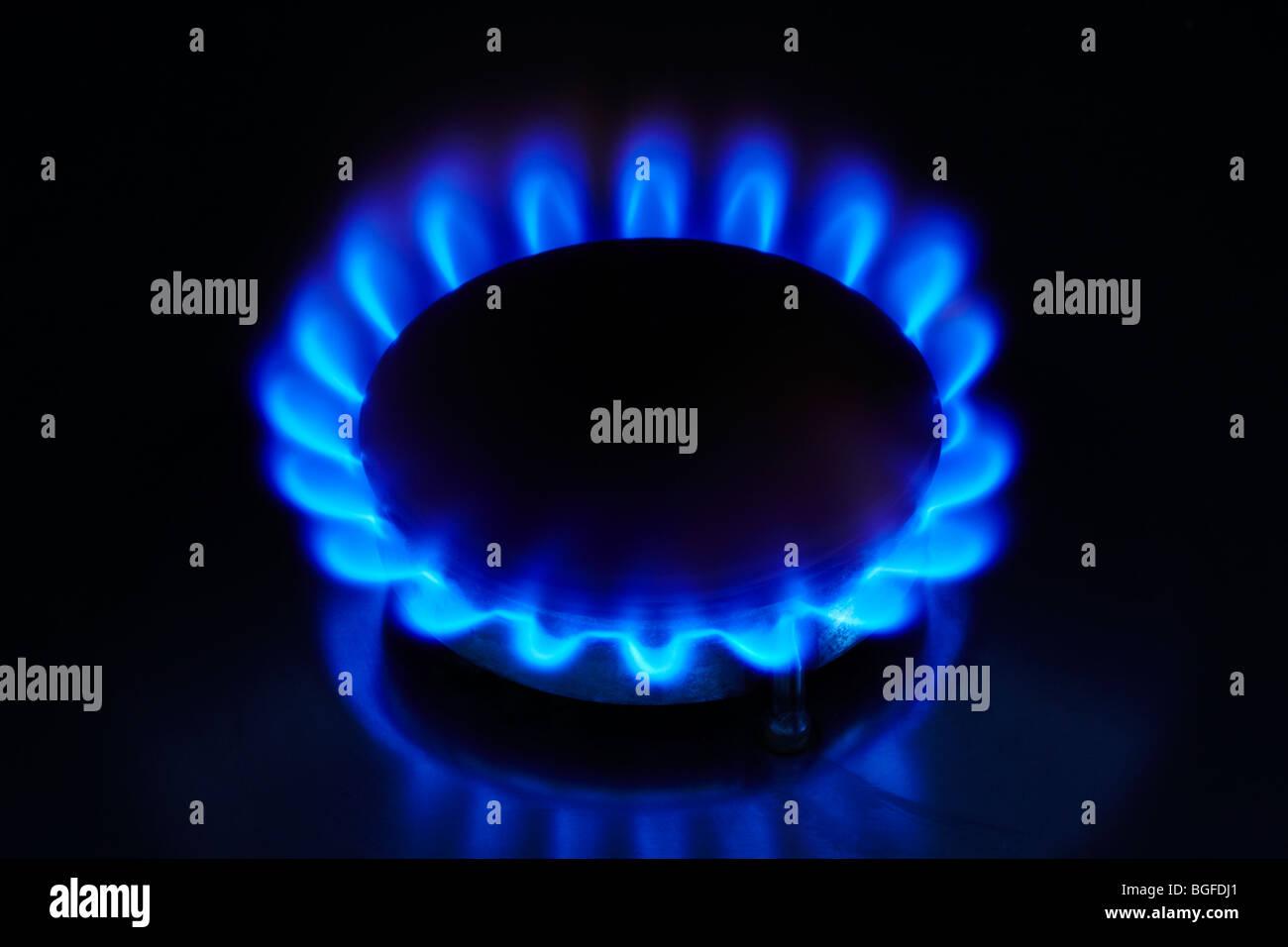 Fornello a gas con fiamma blu Immagini Stock