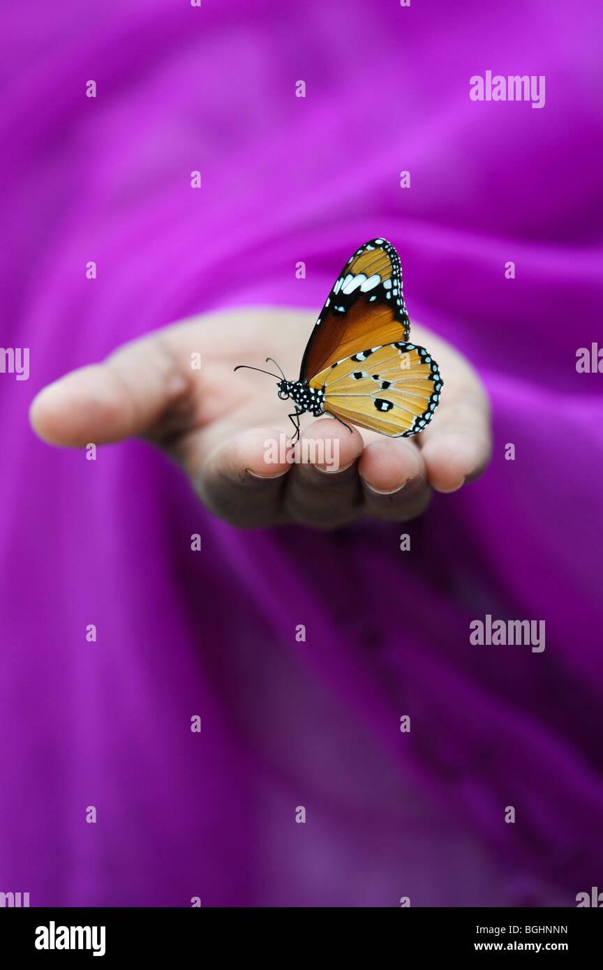 Danaus chrysippus. Plain Tiger butterfly su ragazze indiano mano. India Immagini Stock