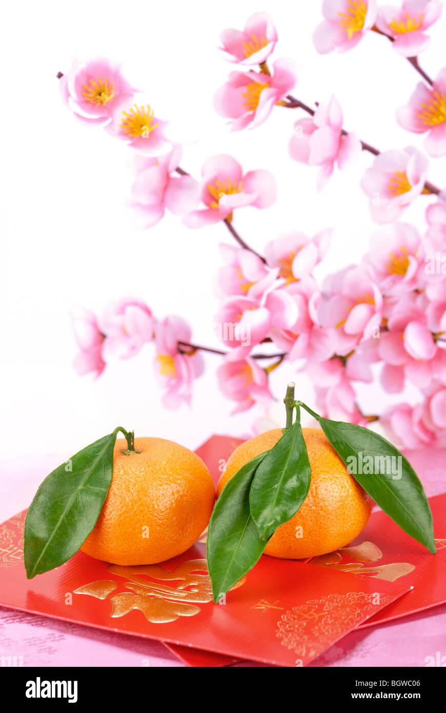 Nuovo anno lunare cinese ornamenti su sfondo bianco. Immagini Stock