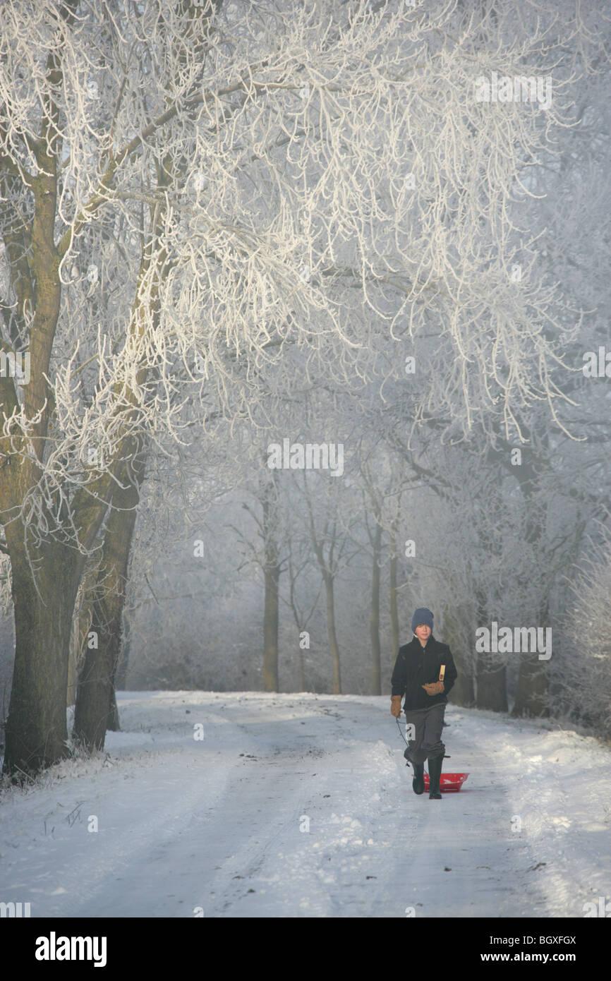 Un giovane ragazzo a camminare su una corsia nel Cheshire tirando la sua slitta in un freddo gelido giorno. Immagini Stock