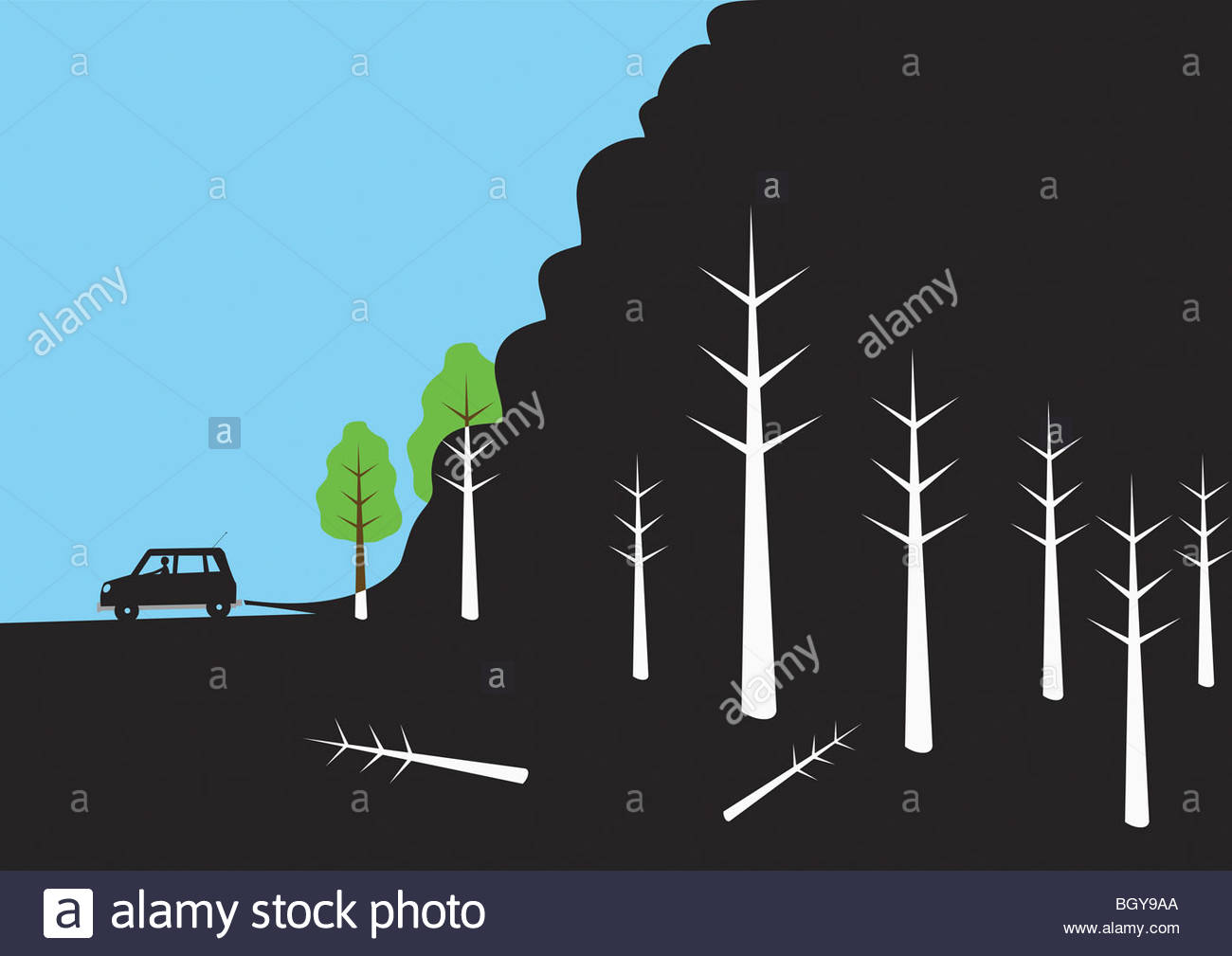 Parcheggio auto in prossimità dei boschi Immagini Stock