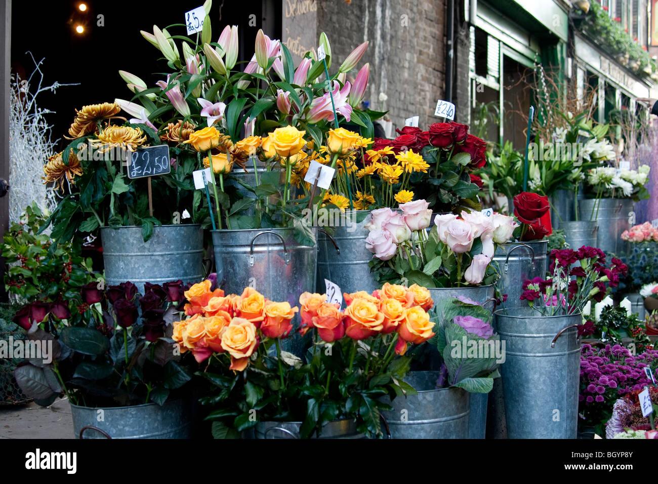 Un fiore in stallo nel mercato di Borough, a sud di Londra. Foto Stock
