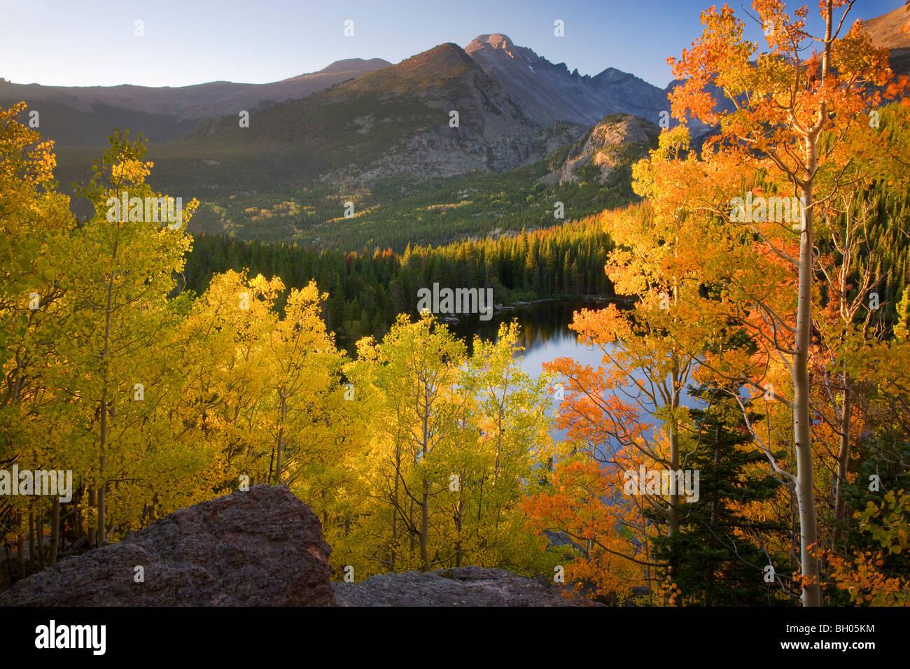 I colori autunnali a Bear Lake, il Parco Nazionale delle Montagne Rocciose, Colorado. Immagini Stock
