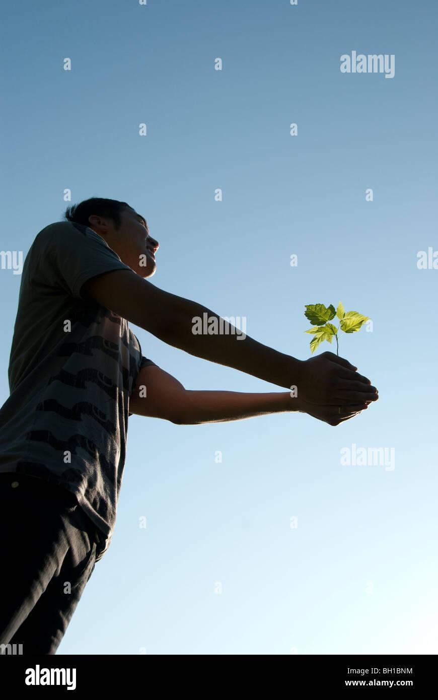 Giovane Azienda piantina con le braccia tese, Assiniboine Park, Winnipeg, Manitoba, Canada Immagini Stock