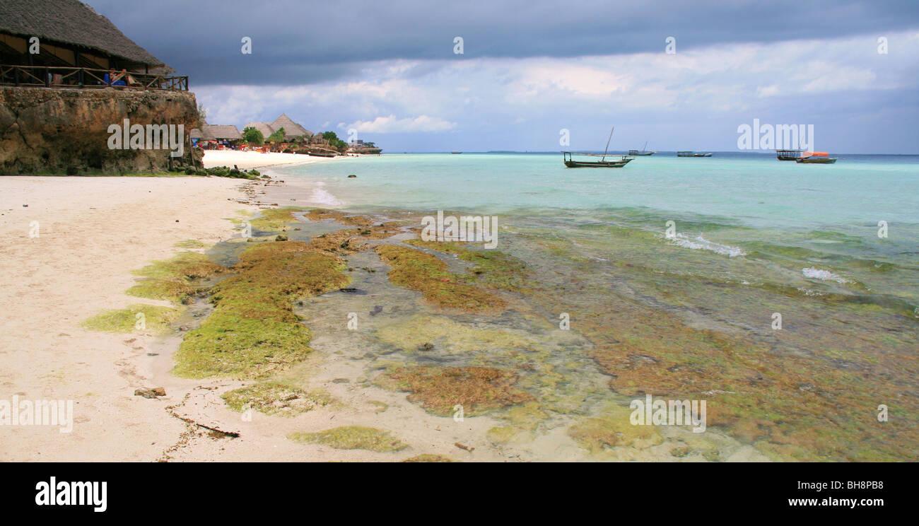 Il turista ristoranti e bar di nungwi condividere la spiaggia con sabbia bianca, turquise blu acqua e alghe coralline Immagini Stock