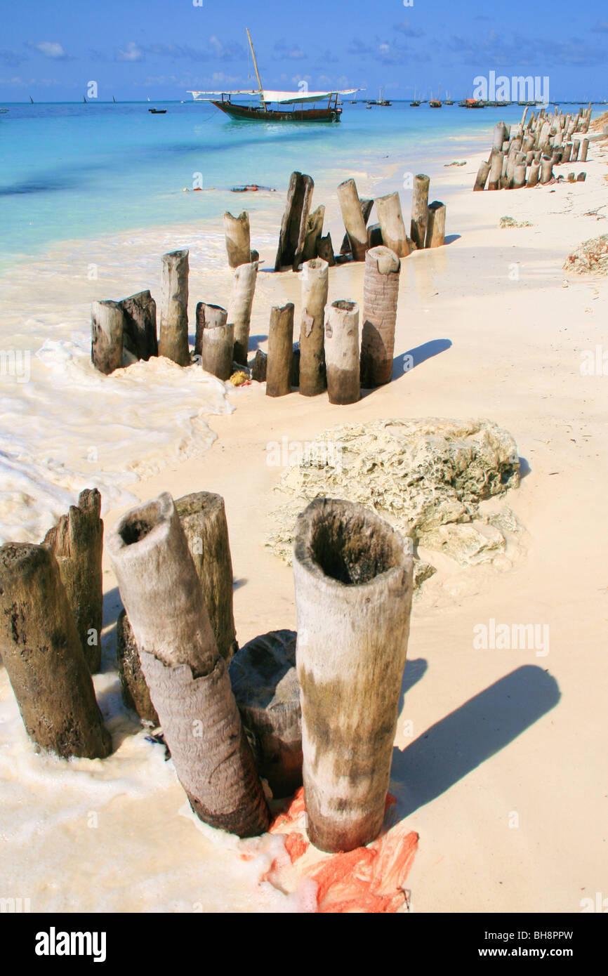 Inguine in legno proteggere la sabbia bianca dal turquise mare a Zanzibar Immagini Stock
