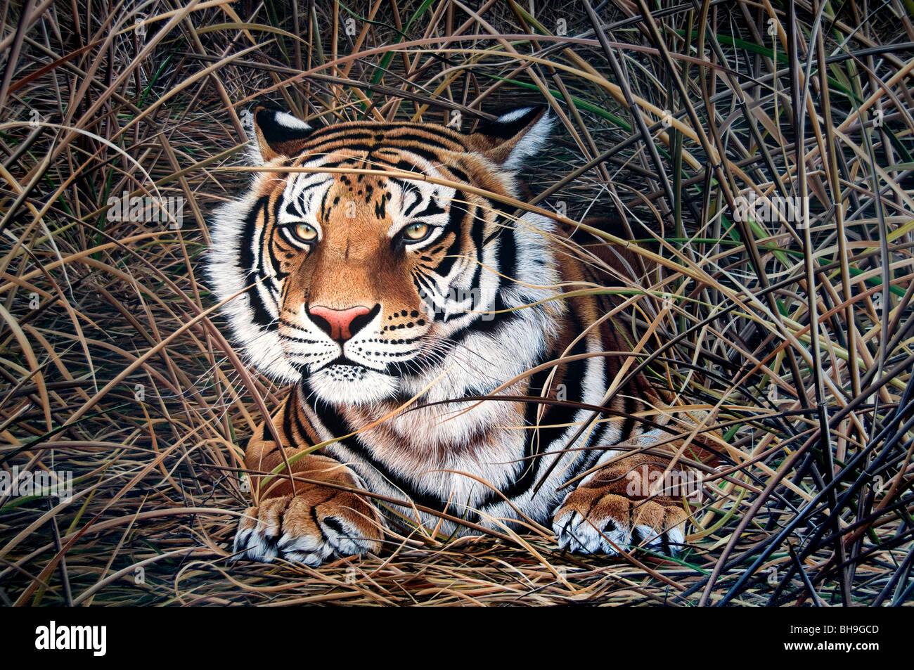 Tiger Buenos Aires San Telmo Galleria di Pittura arte artista Argentina Town City Immagini Stock