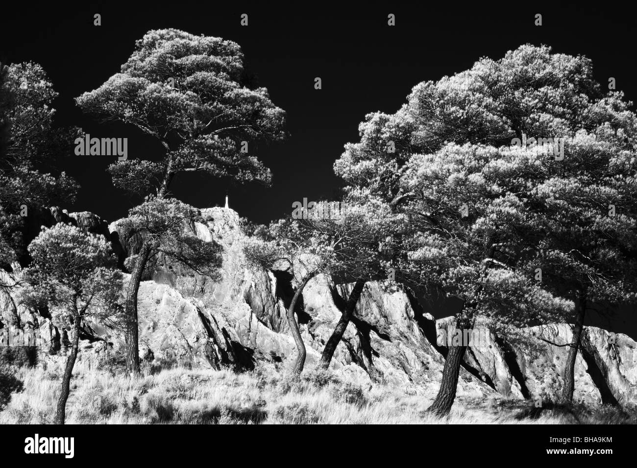 Montagne Ste Victoire, Bouches-du-Rhone, Provenza, Francia Immagini Stock