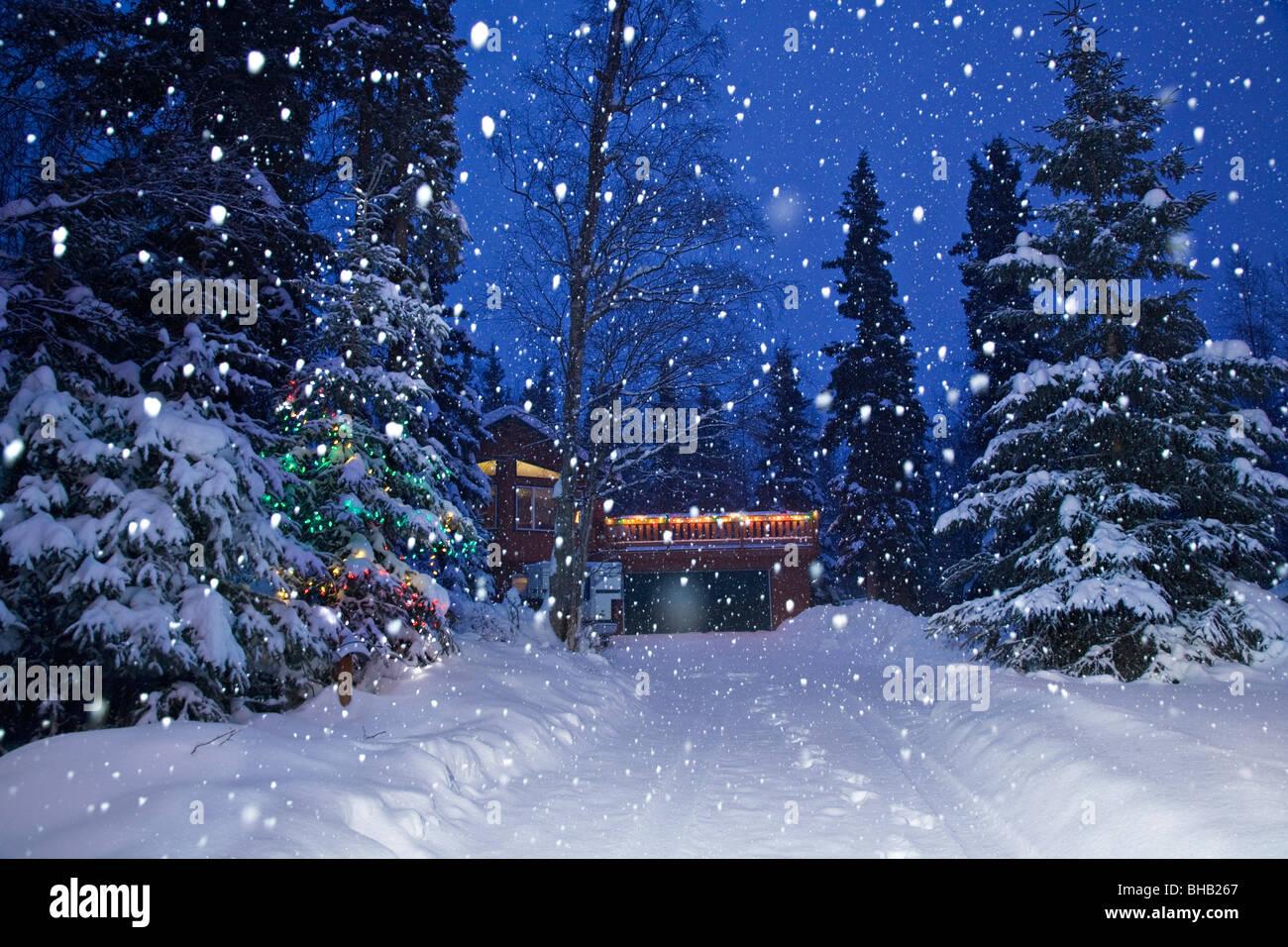 Foto Con La Neve Di Natale.La Neve Che Cade Su Di Un Albero Di Natale Illuminato Accanto A Una Coperta Di Neve Viale Con Una Casa In Background Anchorage In Alaska Foto Stock Alamy